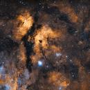 [Bicolor]  IC 1318 - The Butterfly Nebula,                                Maxence Ouafik