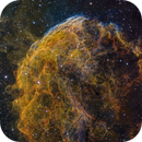 IC 443 - 30 hrs On Top of the Jellyfish,                                John Hayes