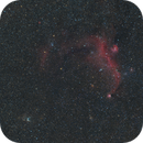 Seagull and Thor´s Helmet Widefield,                                Gabriel Siegl