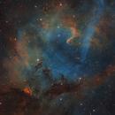 Core of the Lion Nebula Sh2-132,                                Barry Wilson