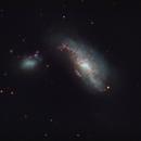 NGC4490,                                bilgebay
