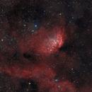 Sh2-101 Tulip Nebula,                                Константин