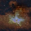 A Mini Study of the Birds: Messier 16 - The Eagle Nebula,                                Timothy Martin & Nic Patridge