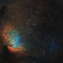 Tulip Nebula Sh2-101 and Cygnus X-1 bow shockwave,                                Barry Wilson