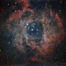 Rosette Nebula,                                Farrell