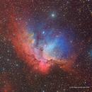 The Wizard Nebula - NGC 7380 - Hybrid Image,                                Eric Coles (coles44)