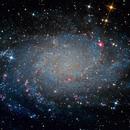 M33 - Triangulum Galaxy,                                Maurer Gábor