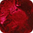 NGC 2264 Christmas Tree Nebula and surroundings,                                equinoxx