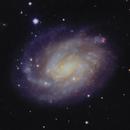 NGC 300 Galaxie dans la constellation du Sculpteur,                                Roger Bertuli