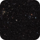 Galaxies in Fornax,                                Rodney Watters