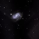 NGC4051 Spiral Galaxy,                                Dean Glace