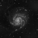M101 Luminance,                                Ron Machisen