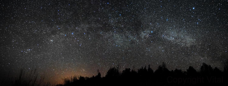 Night sky panoram,                                Vital