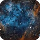 Sh2-115 and Abell 71 in Narrowband,                                Chuck's Astrophotography