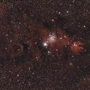 Cone Nebula Widefield,                                Drew Lanphere