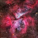 Eta Carinae Nebula, NGC 3372, DSLR, 10 degress off the horizon through volcanic haze,                                Roger Clark