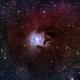 Urban Iris (NGC 7023),                                jerryyyyy