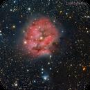 The Cocoon Nebula,                                Edoardo Luca Radice (Astroedo)
