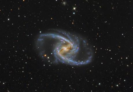 NGC 1365,                                Miles Zhou