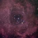 The Rosette (LUM+OII+RGB),                                Ian Parr
