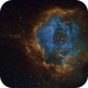 Sh2-275 - Caldwell 49 - An image collection of the Rosette Nebula (new and reprocessed),                                Uwe Deutermann