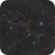 LBN 575 and 573 in Cepheus - LRGB,                                Roberto Botero