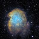 NGC 2174 Monkey Head Nebula,                                starfield