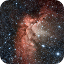 Wizard Nebula,                                Mauro Colnaghi