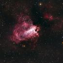 Omega Nebula/Swan,                                Doug Lalla