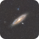 M31 Andromeda Galaxy,                                Phil Wright