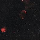 First HaRGB - Widefield Gemini - Canon FD200mm,                                Christiaan Berger