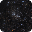 IC4954 / 4955 - Reflections,                                Jason Guenzel