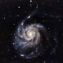 M101,                                redman21