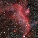 IC 2177 - The Seagull Nebula region,                                Giuseppe Donatiello
