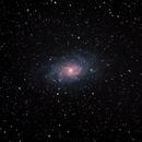 M33 - Galaxie du Triangle,                                Sébastien Kesteloot