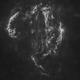 Cygnus Loop in Ha in Ha - Starless,                                nerdybeardo