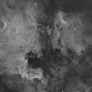 North América and Pélican Nébula,                                Camille COLOMB