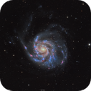 M101 Pinwheel Galaxy,                                Sylvain Lefebvre