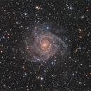 IC342,                                xordi