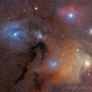 Antares - Rho Ophiuchi Region,                                Nicola Montecchiari