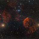 IC 443 - The Jellyfish,                                Bernhard Zimmermann