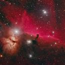 Horsehead and Flame Nebulae,                                Rajeev