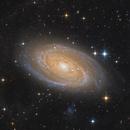 M81 & M82 - Bode's Galaxy & The Cigar Galaxy,                                Pavel Karavatskiy