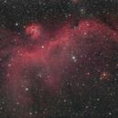 IC 2177  The seagull nebula,                                Aaron