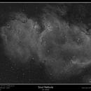 IC 1848, Soul Nebula,                                rflinn68