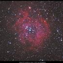 Rosette Nebula via SV503 and 071MC PRO,                                Mateusz Kruczek