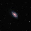 NGC 2903,                                Vijay Vaidyanathan