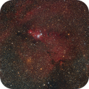 Cone Nebula (wide field),                                Andrew Burwell