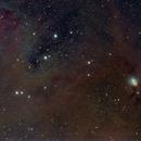 Ic348-Ngc1333,                                ElioMagnabosco