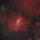 NGC7635 HOO Star RGB,                                  Jesus Magdalena